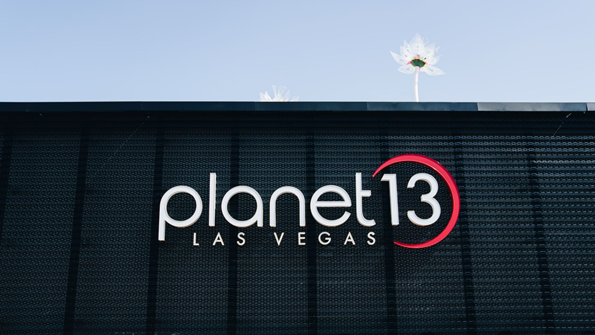 A Partnership Made In Cannabis Heaven: Cannabition & Planet 13